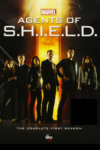 Agents of S.H.I.E.L.D.: The Complete First Season (2013) (TNR14) - Anthology Ottawa