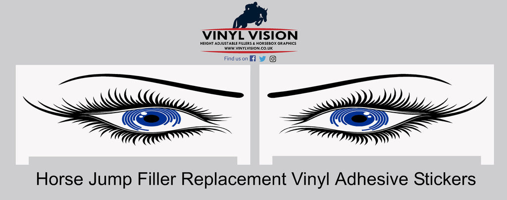 Eyes (pair) -  Replacement stickers - Vinyl Vision