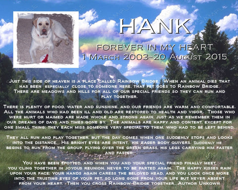 PERSONALIZED Pet Memorial Rainbow Bridge Poem Pet Memorials for Pet Dog Cat 8 X 10 Print Pet Memorial