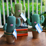 Upcycled Plush Cactus | Upcycled, Recycled, Repurposed, Reimagined | Changing Tides
