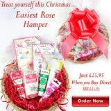HAMPER SET - Easiest Rose Ever Gift Set