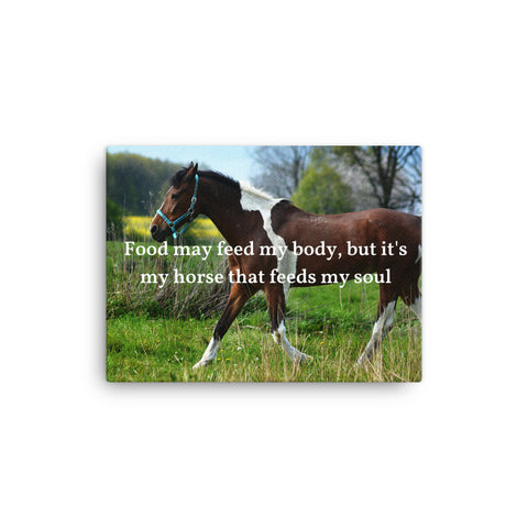 Canvas - Food may feed my body, but it's my horse that feeds my soul