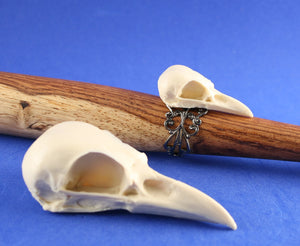 mini magpie skull ring