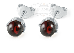 Baltic Amber Stud Earrings - R.B. Amber & Sons