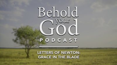Letters of John Newton: Grace in the Blade