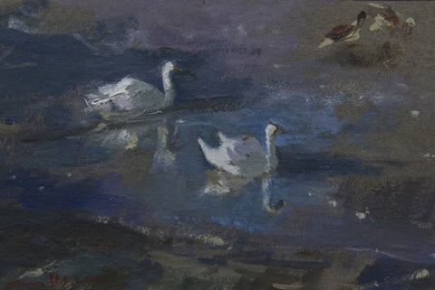 Swans and Geese on the Thames. - from the 'Oils' collection by Jane Corsellis