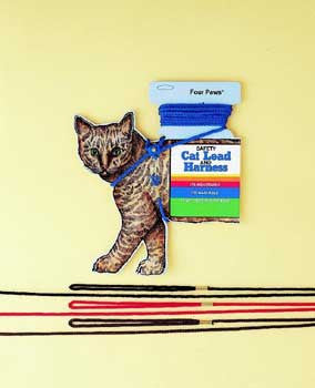 CAT SAFETY LEAD