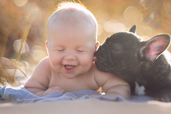 Baby & Bulldog Born On Same Day Think They're Brothers And Do Everything Together