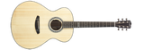 Breedlove Legacy Concerto E Acoustic-Electric Guitar