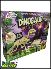Dinosaur Activity Set