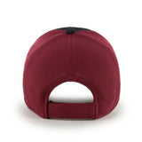 MLB Arizona Diamondbacks Completion Adjustable Hat