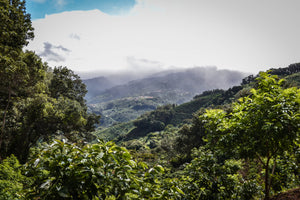 Why we are staying in Costa Rica?