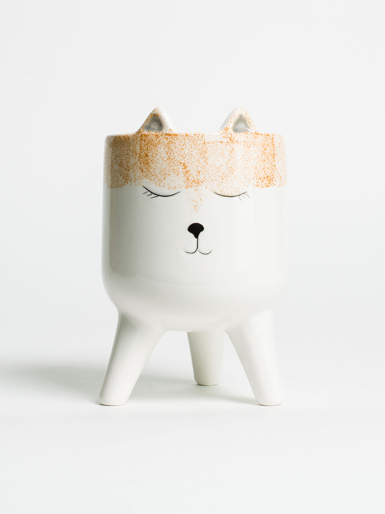 Fox Face Planter