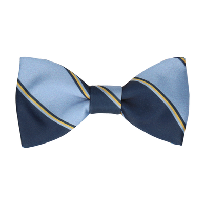 Arundel in Blue & Yellow Bow Tie
