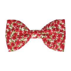 Wilburson in Red Bow Tie