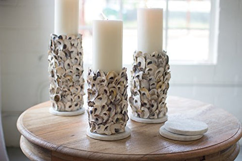 Set Of 3 Oyster Shell Pillar Candle Holders