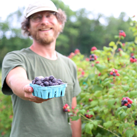 It's berry season!