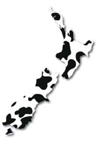 NZ Map Small - Cow Pattern