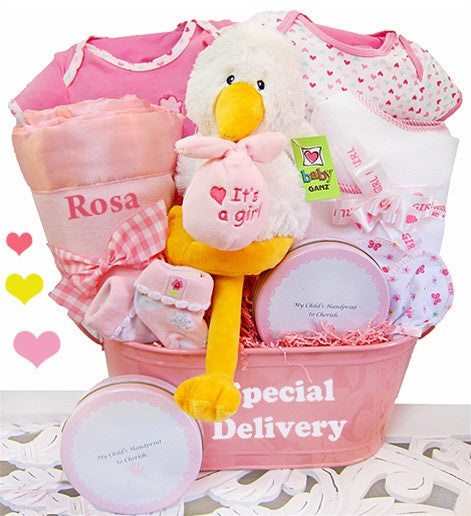 Special Delivery Baby Girl Gift Basket Keepsake Tin