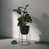 Menu Wire Plant Pot 20 cm - Black