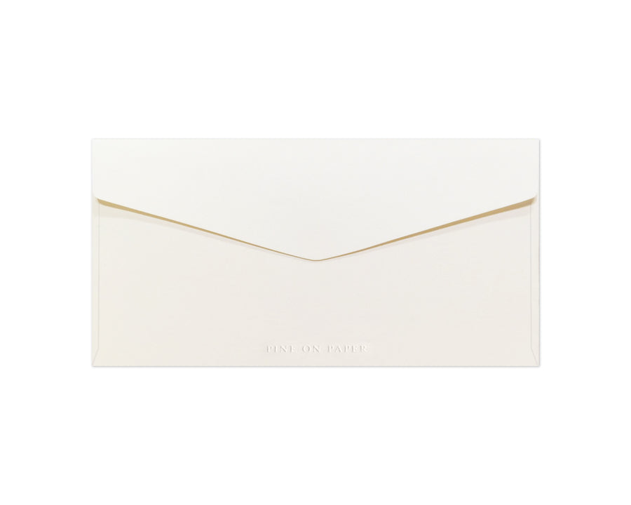 DL Envelope
