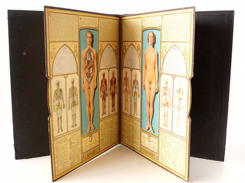 "Vintage ""Bodyscope"" Illustrated Anatomical Book with Dials (c.1935) - ThirdShiftVintage.com"