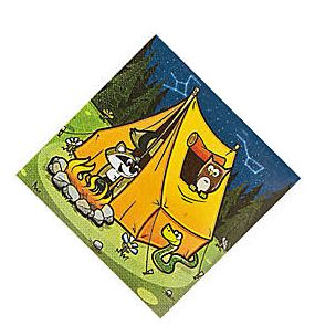 Camp Adventure Beverage Napkins, Camping Party Paper Napkins, Camp Out Party Dinnerware, Dessert Napkins