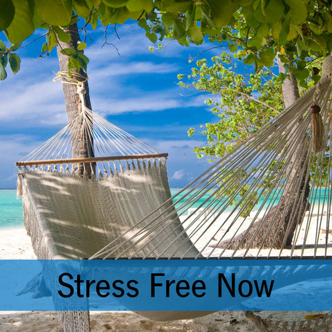 Stress Free Now Online Program