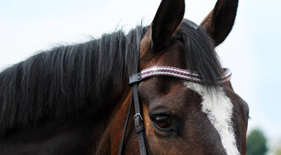 CRYSTAL BROWBANDS