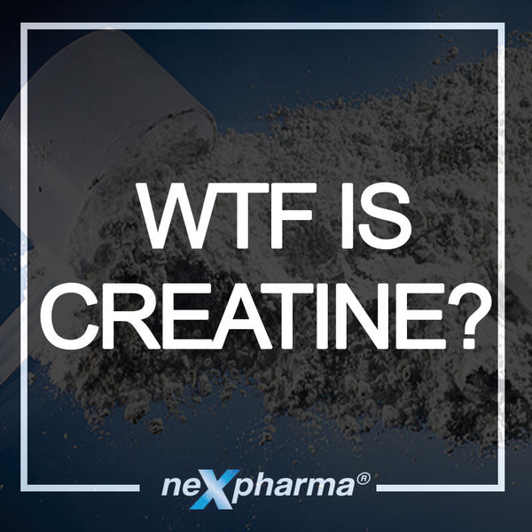How to Take Creatine Monohydrate