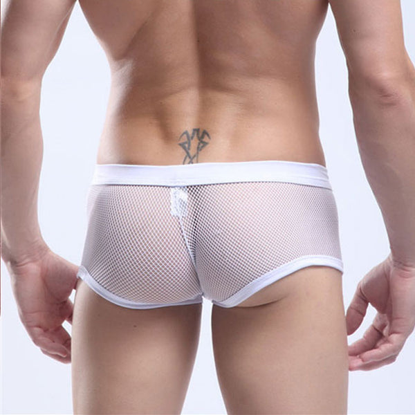 Sexy Transparent Panties Men Fishnet Underwear Male Lingerie