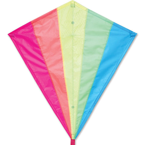 30 in. Diamond Kite - Neon