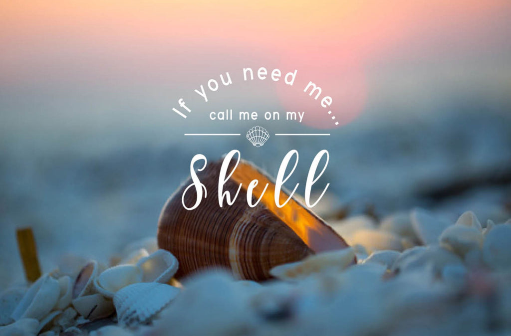Original Beach Art - Call Me On My Shell (Sunset)