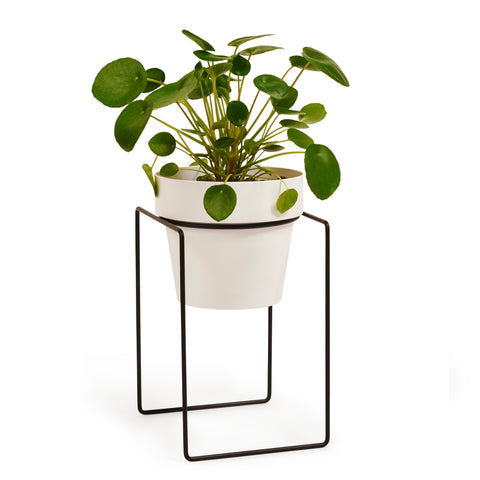 SHRUB - Plant stand mini - NEW!!!