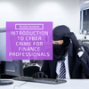 Introduction to Cyber Crime For Finance