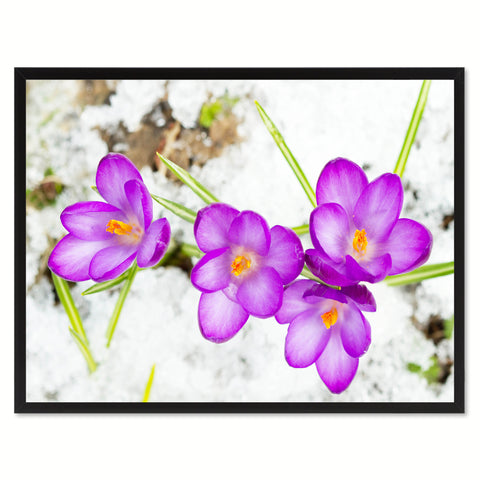 Purple Lotus Flower Framed Canvas Print Home Décor Wall Art