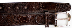 Ostrich Leg Belt- Brown/ Chocolate