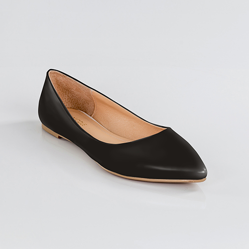 Little Black Flat Pointed Toe Flats