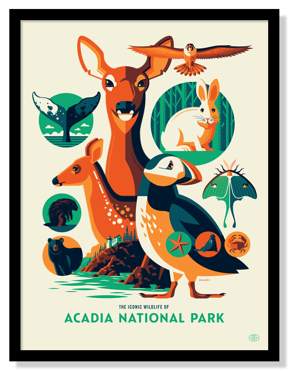 Iconic Wildlife of Acadia National Park Poster