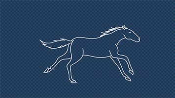 Outline Horse Galloping Loop Cycle Animation