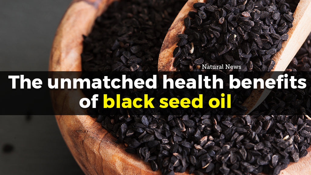 The Health Perks of Ingesting Organic Black Seed Oil