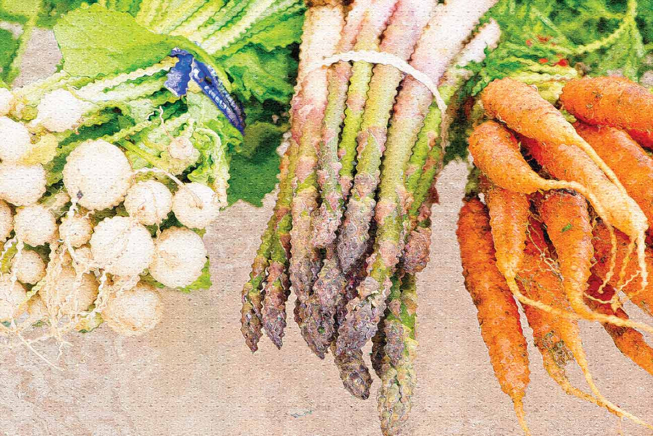 3 pack Farmers Market Vegetable Oil Painting Photos Poster 12X18 - Nutrition Education Store