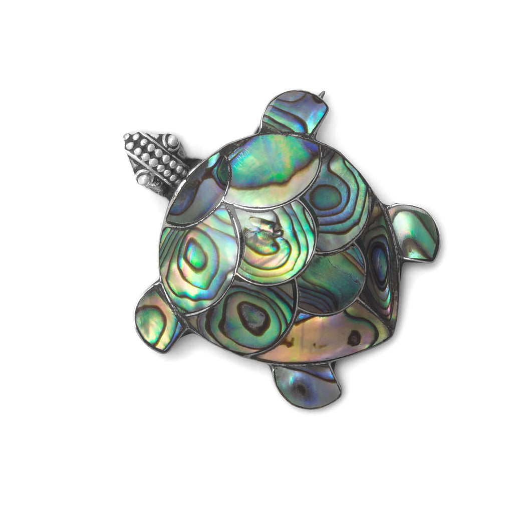 Paua Shell Turtle Sterling Silver Pin or Pendant