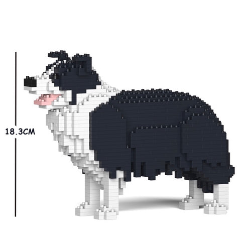 Border Collie Jekca