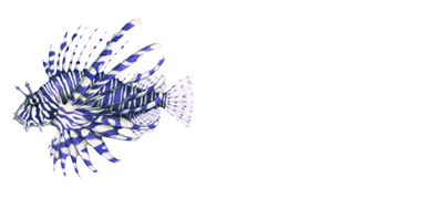 Perth Diving Academy Hillarys Pty. Ltd. ( ABN 28 115 247 053 )