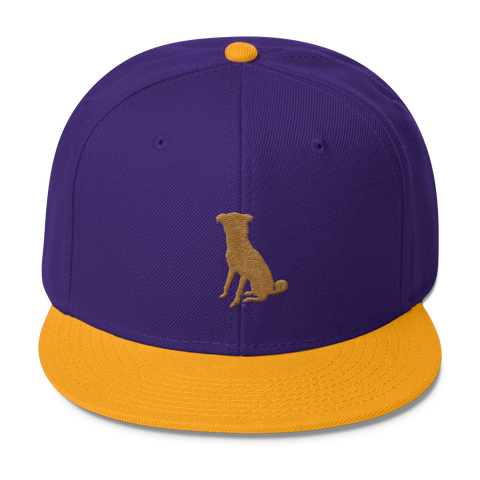 The Gold/Purple Chugg Snapback