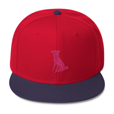 The Navy/Red Chugg Snapback