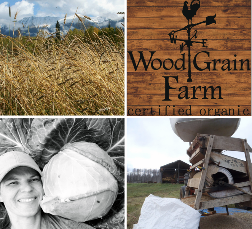 Meet BC Eco Seed Co-op Member Jolene Swain of WoodGrain Farm