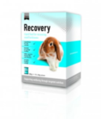 Science Recovery 10x20g