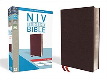 NIV Large Comfort Print Thinline Bible - Burgundy Leather